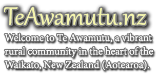 www.teawamutu.co.nz